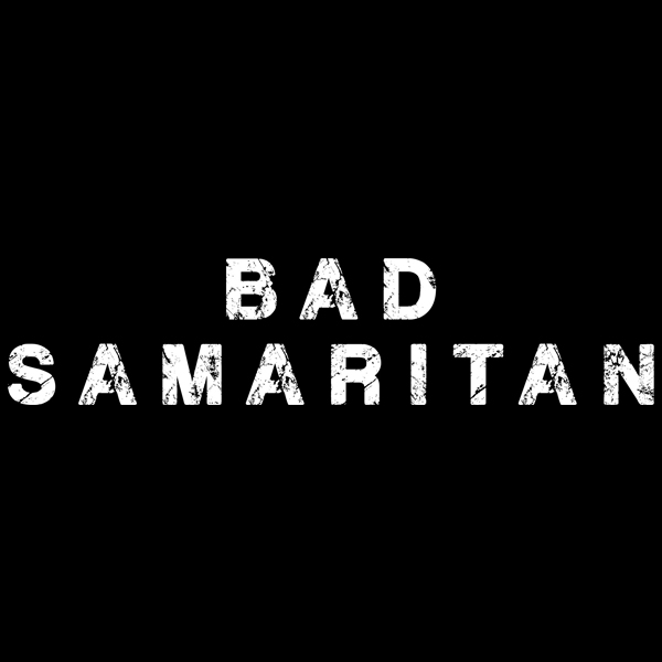 bad samaritans book Bad samaritans book topics: automotive industry, general motors, volkswagen group pages: 6 bad samaritans by ha-joon chang page 17 the place to start is with a true history of capitalism and.